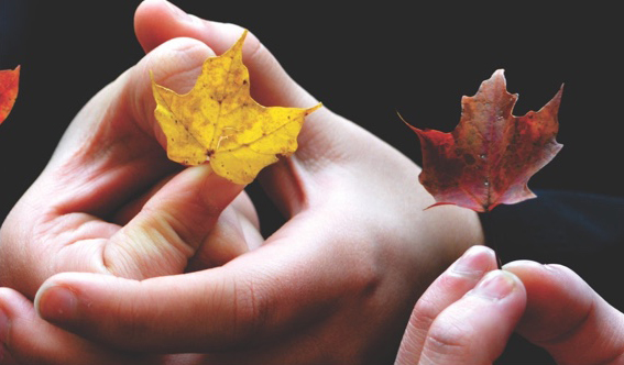 Hands holding autumnal leaves